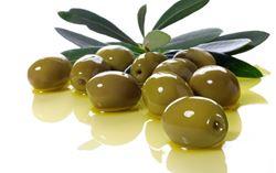 Immagine per la categoria Olive
