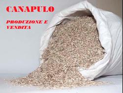 Immagine di Canapulo - 100% Italiano
